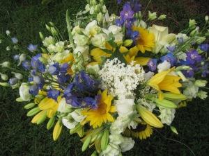 suns, delphinium, lily