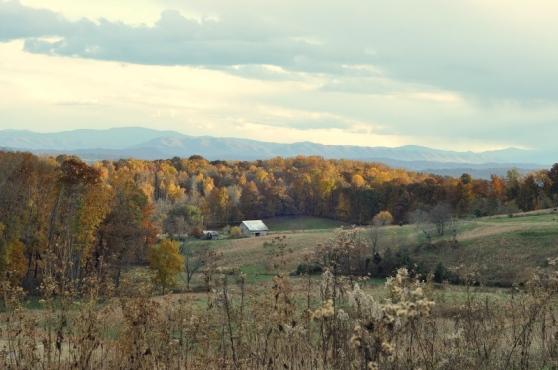 barn ridge