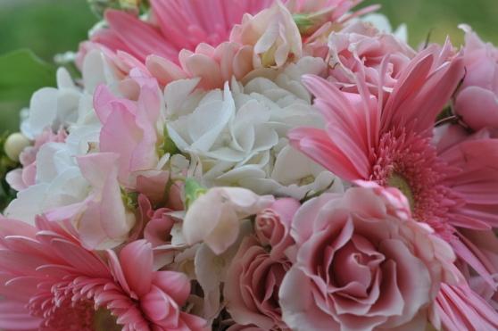 sweet n pink