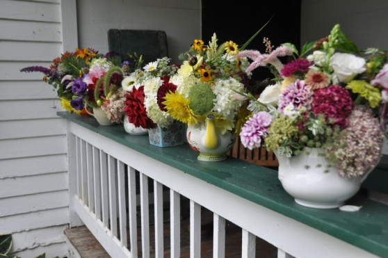 pretty pots all in a row