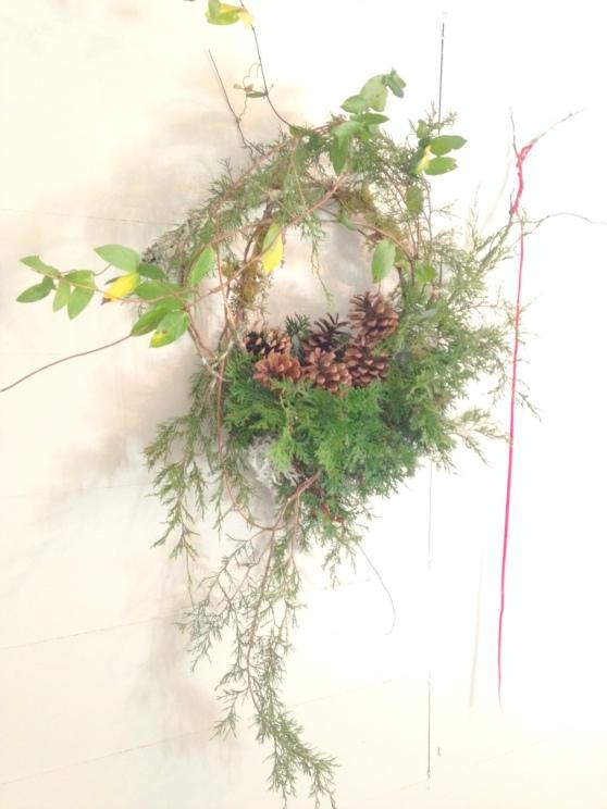 pine cone nest